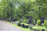 Preobrazhenskoe Jewish Cemetery, South Area by William C. Brumfield